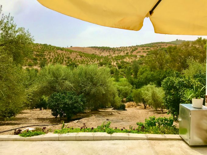 LONG TERM RENTAL new cozy House in the municipality of Periana.